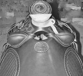 SADDLE BRAND INFO - The Bentley Farm- Saddles, Tack, & More!